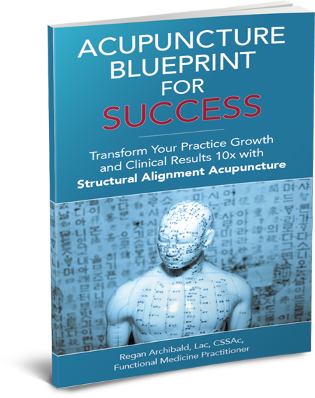 Blueprint for Acupuncture Success ebook cover