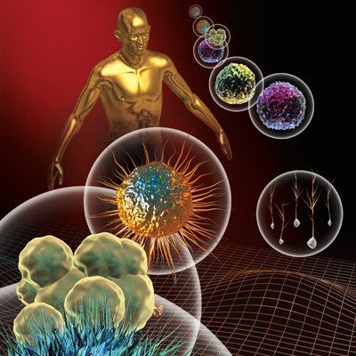 graphic illustration of a human torso surrounded by different types of stem cells